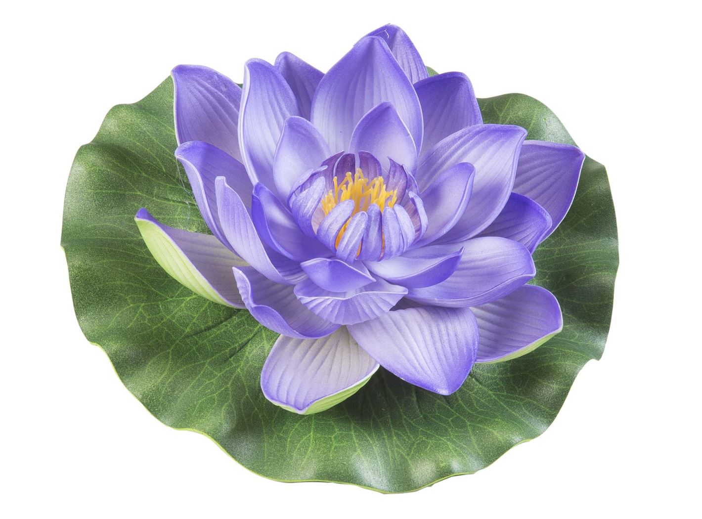 velda lotus foam purple