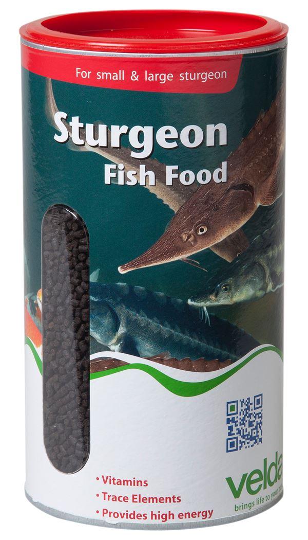 velda visvoer sturgeon