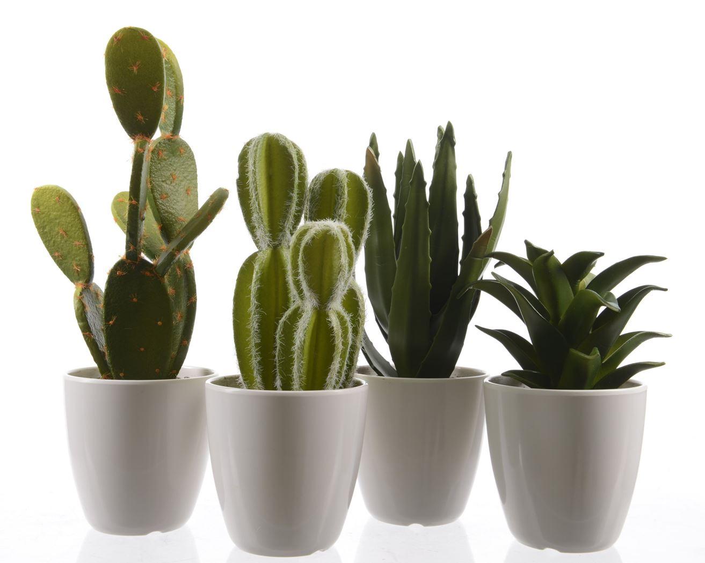 vetplant plastic groen in pot (4ass.)