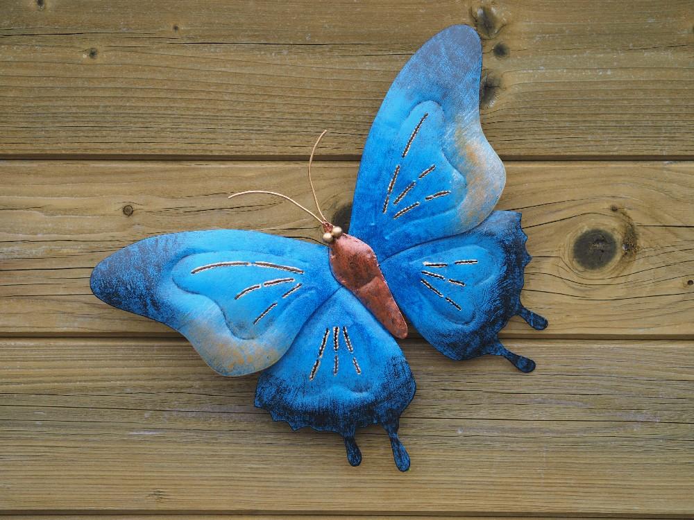 vlinder blauw groot